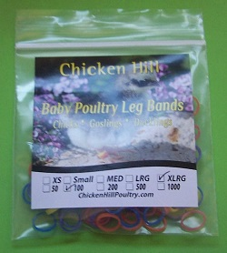 Baby Leg Bands EXTRA-LARGE (pkt 100)